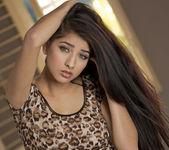 Dark Spice - Megan Salinas 4