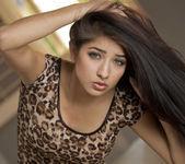 Dark Spice - Megan Salinas 6