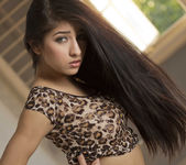 Dark Spice - Megan Salinas 9