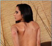 Tia Cyrus - Latin Adultery 19