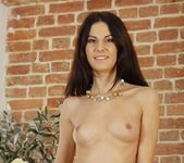 Lilu Tattoo - 21 Sextury 7