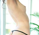 Stockings - Vanessa A. 3