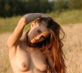 The field of love - Dasha 11