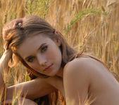 The field of love - Dasha 16