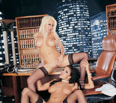 Gina Lynn and Lanny Barbie 11