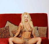 I love glamorous shoots! - Gina Lynn 4