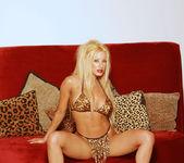 I love glamorous shoots! - Gina Lynn 5