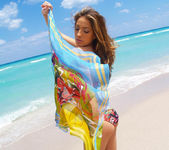 Beautiful Jenna Haze Takes A Trip To Miami Beach And Poses 27