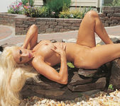 Gina Lynn Oils Up And Poses 19