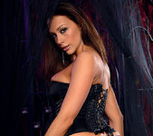 Chanel Preston - Lingerie and Toys 18