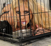 Tasha Reign - Good Kitty Gets Fed 21