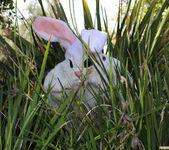 Tasha Reign Fucks the Easter Bunny 2