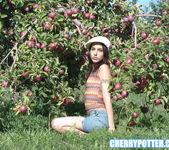 Cherry Potter 2