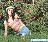 Cherry Potter 15