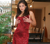Lucy Lee wearing a sexy red dress gets naked 5