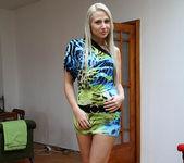 Viktoria Diamond Strips and Gives a POV Blowjob 4