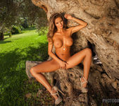 Dana - The Tree Of Beauty - PhotoDromm 9