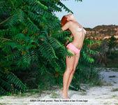 Tropical Passions - Dina P. 2