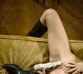 Pleasure Horse - Caprice 12