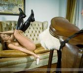 Pleasure Horse - Caprice 14