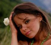 Green grass - Hannusya 7