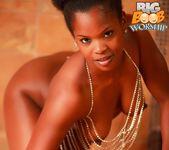 Shiny Wet - Alli - Big Boob Worship 4