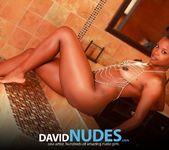 Wet Dream - Alli - David Nudes 4