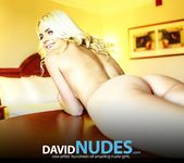 Radiant Things - Jill - David Nudes 14