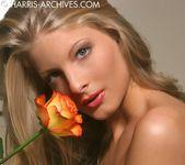 Cayenne - Rose 12