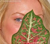 Melissa - Leaf 8