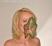 Melissa - Leaf 10