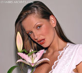 Sandra Shine - Flower 7