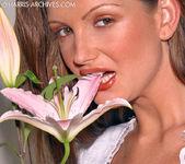 Sandra Shine - Flower 13