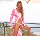 Phoenix - Pink 2
