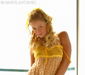 Holly - Yellow 2