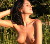 Soft grass - Barbara 2