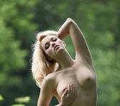 Thickets - Alissa - Zemani 3