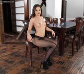 Anina Silk - Pantyhose and a ribbed vibrator 7