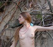 Les racines - Lenusya 14