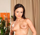 Ally Style, Niki Sweet, Kari - 5 Incredible Orgies 23