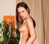 Ally Style, Niki Sweet, Kari - 5 Incredible Orgies 25