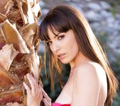 Dana DeArmond - The Stepmother #10 18