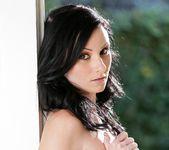 Veruca James - Forbidden Affairs #02 - My Wife's Sister 17