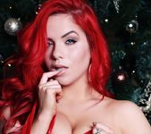 Harley gives us a red Christmas 8