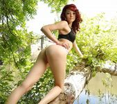 Kylie Cole strips by the tree 6
