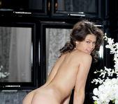 Jackie D - Orario - MetArt 11