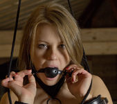 Viola Bailey - Restricted 1 - The Life Erotic 6