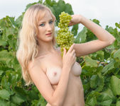Zemira A - Wine Country 1 - Erotic Beauty 3