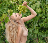 Zemira A - Wine Country 1 - Erotic Beauty 14