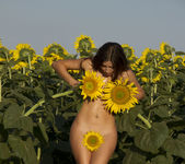 Rimma A - The Sunflower - Erotic Beauty 5